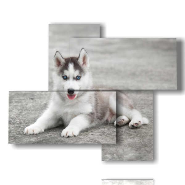 Panel mit gemalten dem spektakulären Hund