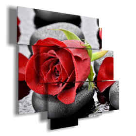 Modern red roses square stones in blacks