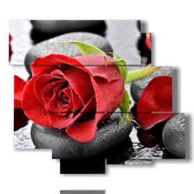 quadri moderni rose rosse nei sassi neri