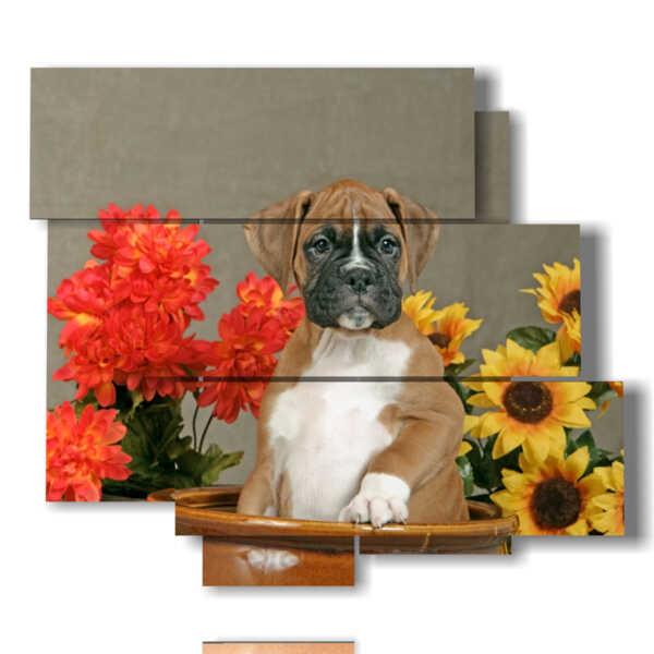 quadro ritratto cane in un vaso di fiori