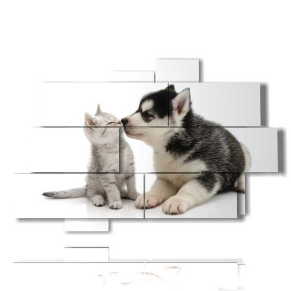 quadri cani e gatti con tanto amore