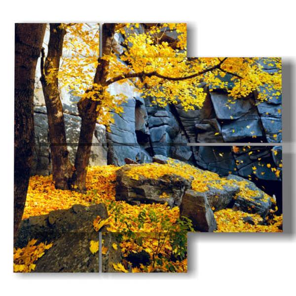 hojas de otoño en imágenes de color amarillo