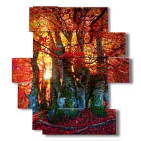 quadri d autunno nel bosco rosso