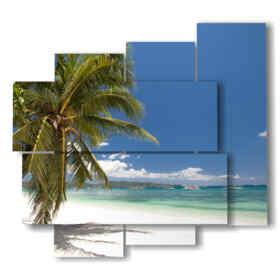 tableaux dans la plage de paume