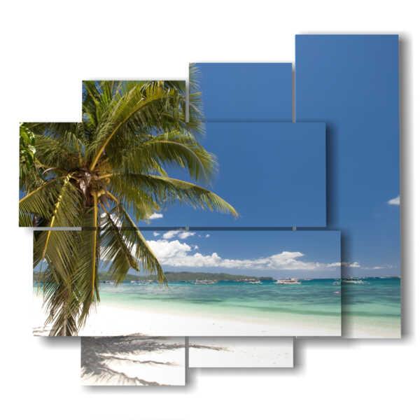 Bild in dem Palmenstrand