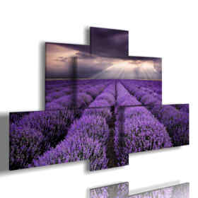 paintings with lavender flowers in a reflection of the sky