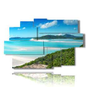 quadro vista mare e la spiaggia nell'arcipelago di Whitsunday in Australia.