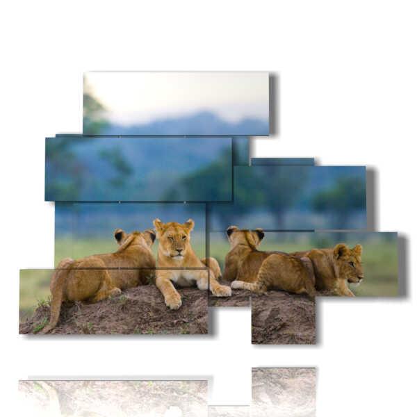 tableaux de petits lions dans leur tanière