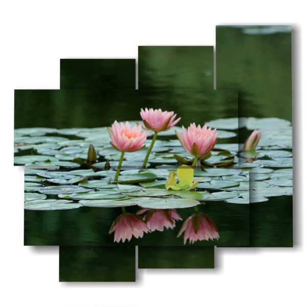 agua de color rosa cuadro de las flores del lirio