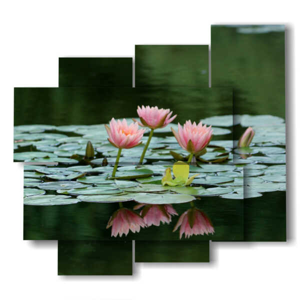 pink water lily flowers painting