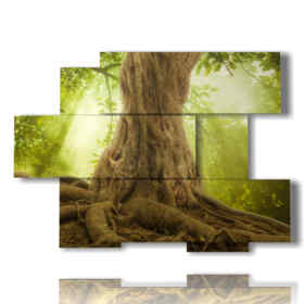 tableaux majestueux arbres avec le tronc