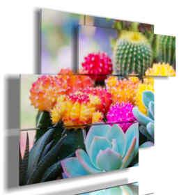 image de fleurs avec des plantes grasses colorées