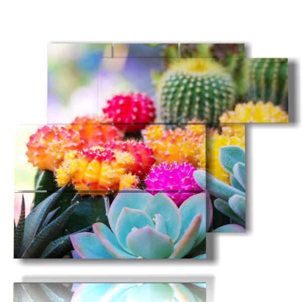 cuadro de flores de colores con suculentas