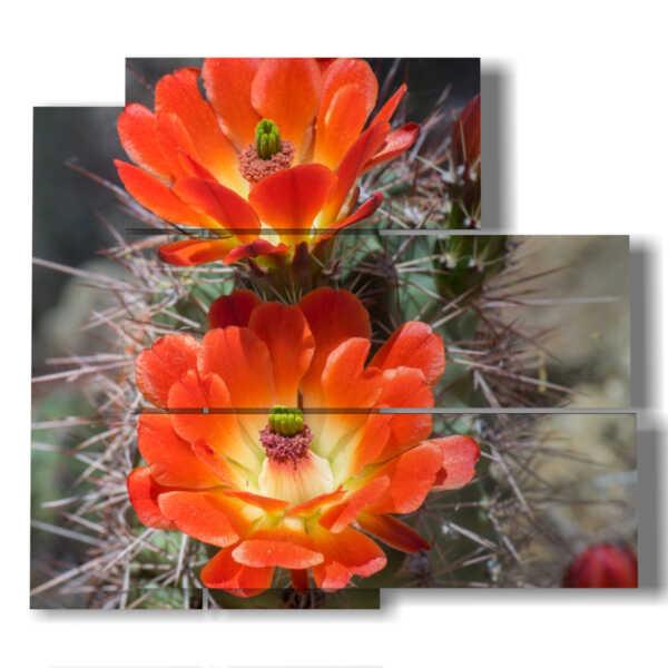 tableaux moderne fleurs de cactus