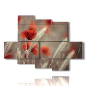 quadro fiori papaveri e spighe