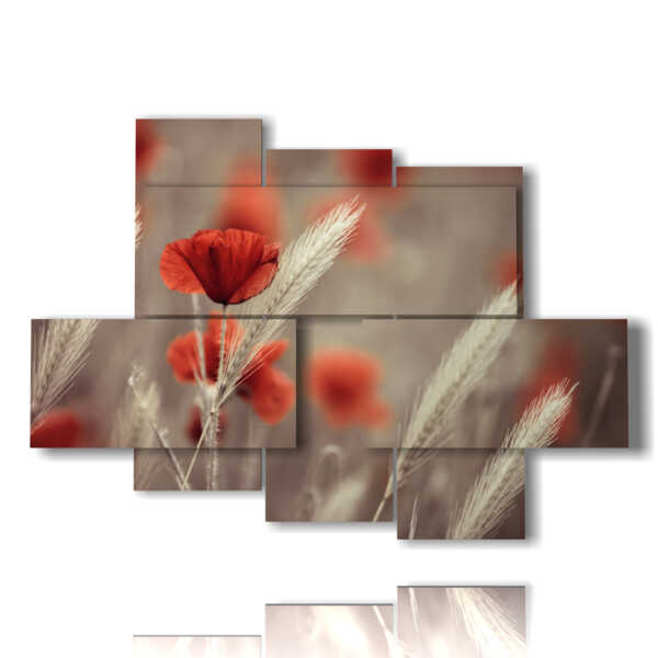 Blumen Bild Mohnblumen und Ohren