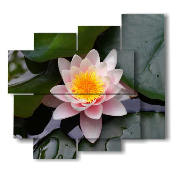 cuadro con flores de loto
