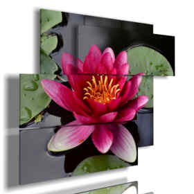 water lilies in the pond painting