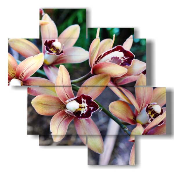 quadri fiori moderni con magnolie