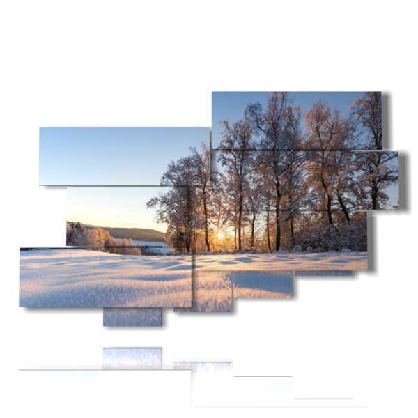 tableaux avec de la neige éclairée par le soleil