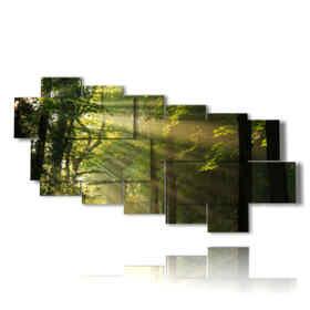 quadri con alberi in bosco