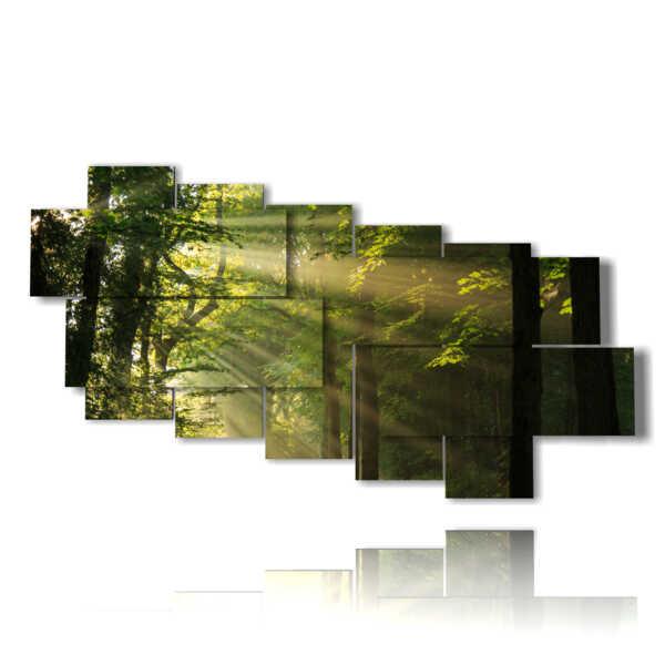 tableaux avec des arbres forestiers