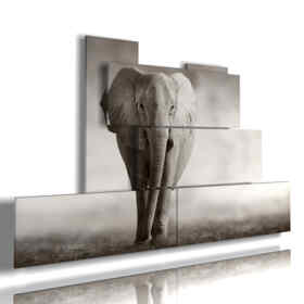 painting gray elephant