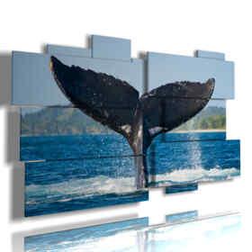 tableaux avec du poisson de queue de baleine