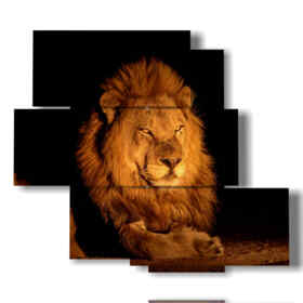 lion painting fiery