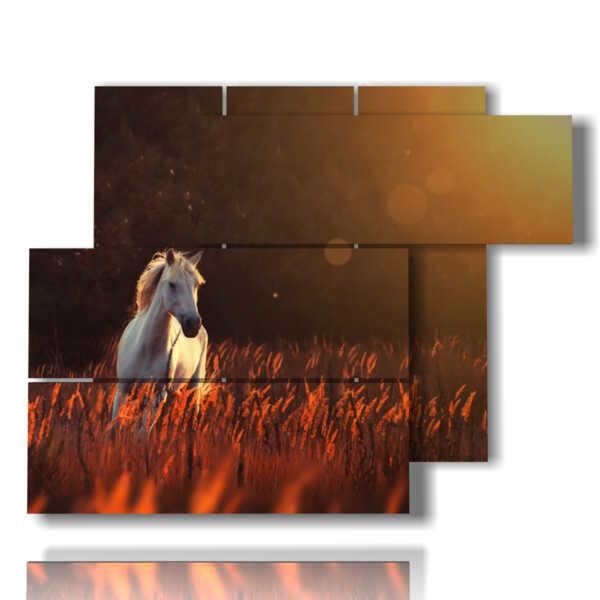 chevaux-tableaux au coucher du soleil sur un champ de blé