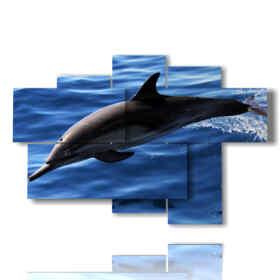 imagen de los delfines en el mar azul