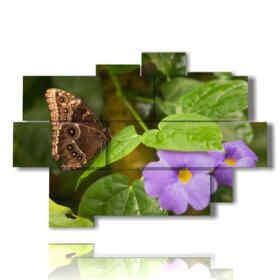 mariposas cuadros y flores de color púrpura