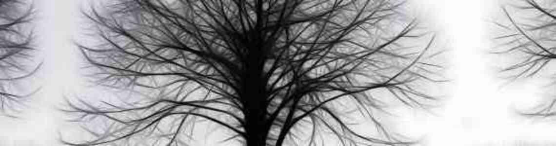 tableaux modernes arbre