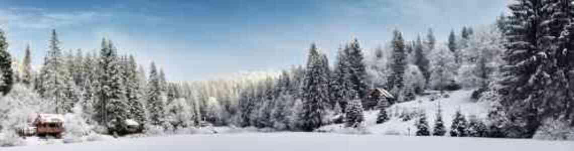 tableaux modernes hiver