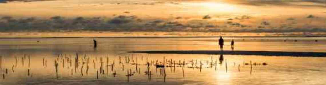 quadri tramonto